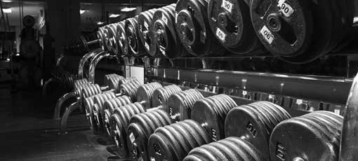 Muskelaufbau aber richtig