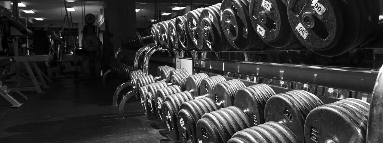 So funktioniert der Muskelaufbau - Hanteln